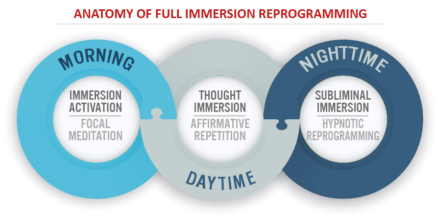 Anatomy of Full Immersion